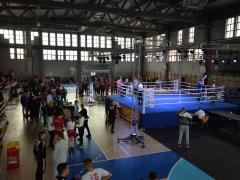 Kik-boks balkan best fighters